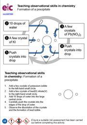 A preview of the Formation of a precipitate microscale practical sheet, with integrated instructions