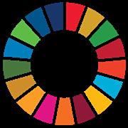 The Sustainable Development Goals logo
